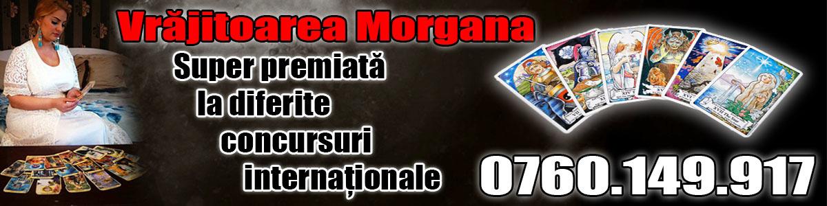 Copyright vrajitoarea Morgana